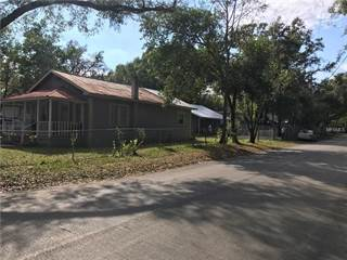 Single Family for sale in 9512 N 11TH STREET, Tampa, FL, 33612