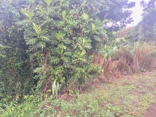 Single Family for sale in CARR 782 BO. CEIBA, Cidra, PR, 00739
