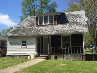 Single Family for sale in 308 Carpenter Street, McLeansboro, IL, 62859