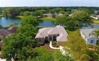 Single Family for sale in 12001 SUMMER MEADOW DRIVE, Bradenton, FL, 34202