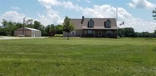 Single Family for sale in 1432 Red Stripe Road, Odin, IL, 62870