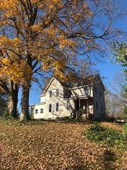 Single Family for sale in 439 Locust, Saint Mary, MO, 63673