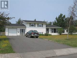 Single Family for sale in 21 DUNN Place, Grand Falls - Windsor, Newfoundland and Labrador