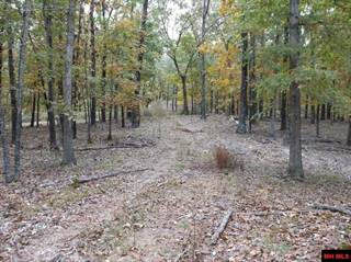 Land for sale in 3999 SUNSET RIDGE, Cave City, AR, 72521