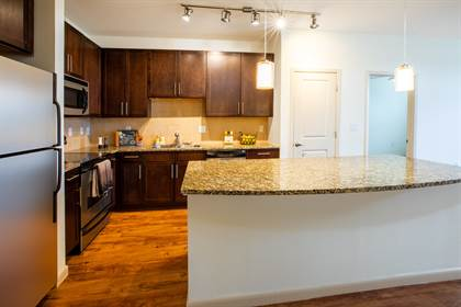 Apartment for rent in 302 Gray Street, Houston, TX, 77002