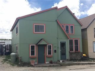 Single Family for sale in 427 CHESTNUT, Leadville, CO, 80461