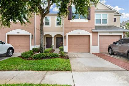 Residential Property for sale in 26553 CASTLEVIEW WAY, Wesley Chapel, FL, 33544