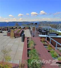 Apartment for rent in The 101 - Two Bedroom C.4, Kirkland, WA, 98033