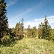 Land for sale in 44 Vernon Court, Mccall, ID, 83638
