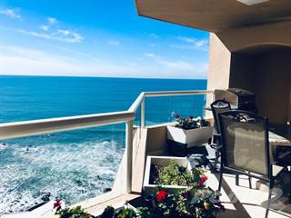 Houses Apartments For Rent In La Jolla Real 1 Rentals In La