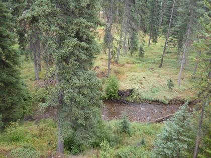 Lots And Land for sale in 386 Skyport Way, Seeley Lake, MT, 59868