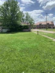 Land for sale in 105 Railroad St., Durand, MI, 48429