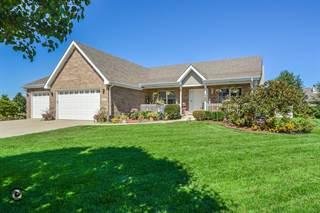 Single Family for sale in 1053 Hummingbird Lane, Peotone, IL, 60468