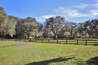 Farm And Agriculture for sale in 12949 NW 97th Place, Ocala, FL, 34482