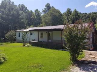 Single Family for sale in 2539 Blaine Creek Rd, Louisa, KY, 41230