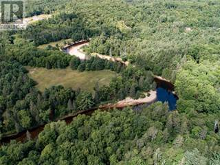 Land for sale in 304 OLD NORTH RD, Huntsville, Ontario, P1H2N5