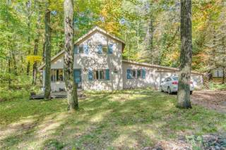 Single Family for sale in 12110 VICTORIA Drive, Canadian Lakes, MI, 49346