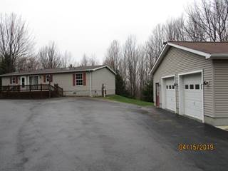 Single Family for sale in 29 Mandam Lane, Greater Mansfield, PA, 16917