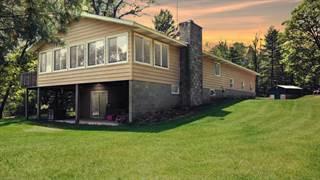 Single Family for sale in 6620 Winkelman Road 20 ACRES, Lewiston, MI, 49756