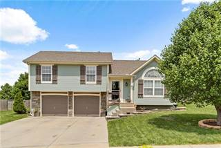 Single Family for sale in 1114 Carlisle Drive, Raymore, MO, 64083