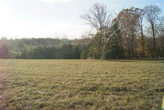 Farm And Agriculture for sale in 1342 Harkreader Rd, Mount Juliet, TN, 37122