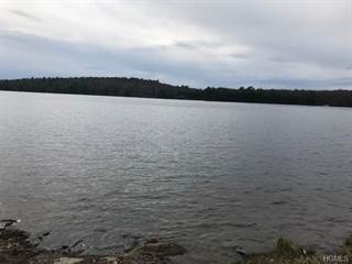 Land for sale in (lot #34.4) Woods Road, Greater Highland Lake, NY, 12792