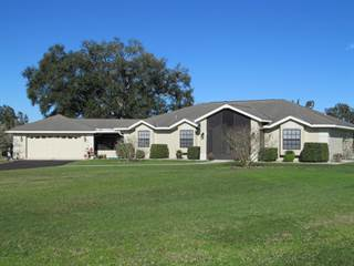 Farm And Agriculture for sale in 9187 W Hwy 316, Reddick, FL, 32686