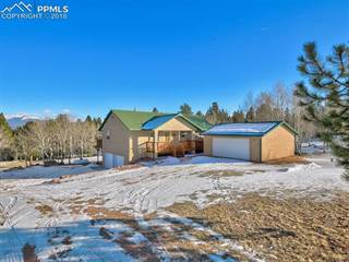 Single Family for sale in 130 Panorama Drive, Florissant, CO, 80816