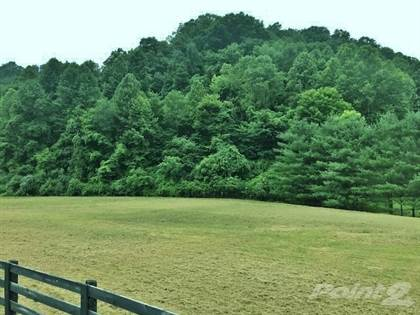 Lots And Land for sale in 29 Babe Delong Rd., Debord, KY, 41214