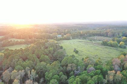 Lots And Land for sale in 513 Society Hill Rd., Carson, MS, 39427