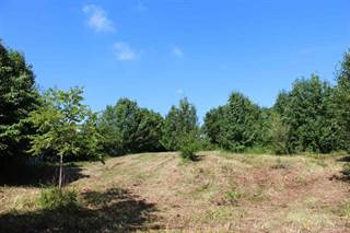 Land for sale in Creek Trace Road, Alexandria, KY, 41001