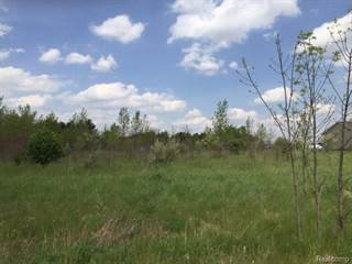 Land for sale in 0 EVA (Lot 3) Lane, Conway, MI, 48836