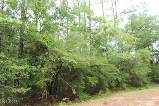 Land for sale in 0 FARGO Drive LOT 12, Alford, FL, 32420