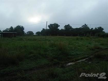 Farm And Agriculture for sale in Brgy. Talacsan, San Rafael, Bulacan, San Rafael, Bulacan