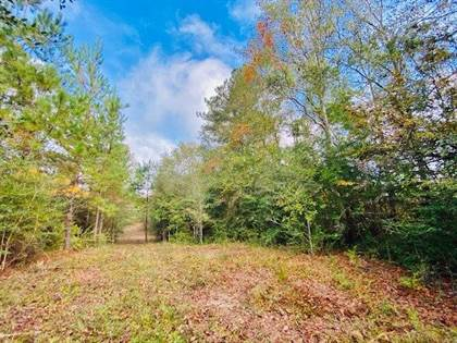 Lots And Land for sale in 000 Tom Warner Rd, Tylertown, MS, 39667