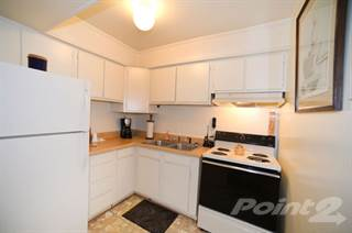 Apartment for rent in Apollo Apartments - 1A Floor Plan, Norfolk, VA, 23513
