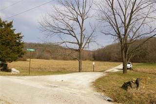 Farm And Agriculture for sale in 0 Fiddle Creek, Pacific, MO, 63069
