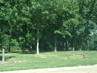 Land for sale in 02 Coventry Lane, Salem, IL, 62881