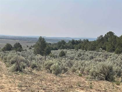 Farm And Agriculture for sale in NW of Hwy 84 in Cebolla, Cebolla, NM, 87518