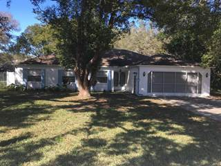 Single Family for sale in 8389 Durham Street, Spring Hill, FL, 34608