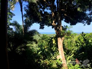 Residential Property for sale in Ocean View Home with 7+ acres Cahuita area, Puerto Limon, Limón