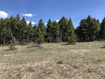 Farm And Agriculture for sale in Tbd Limestone Canyon Trail, Raynesford, MT, 59469
