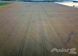 Farm And Agriculture for sale in 777 Acres of Grain Land at Kelwood, MB. (5 quarters), Rosedale, Manitoba