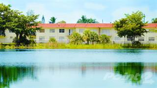 Apartment For Rent In Crystal Lake Apartments   1 Bedroom Type C, Miami  Gardens,