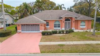 Single Family for sale in 1050 HOOK DRIVE, Spring Hill, FL, 34608