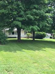 Single Family for sale in 1545 Us Hwy 51 South, Cobden, IL, 62920