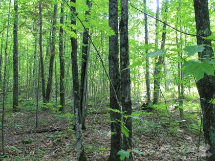 Lots And Land for sale in Lot 39 Alpine Drive, Upson, WI, 54565