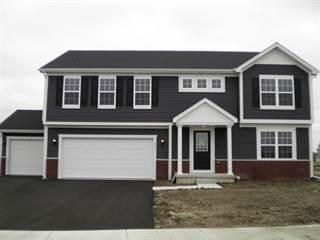 Single Family for sale in 276 Bucksport Lane, Beecher, IL, 60401