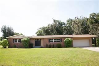 Single Family for sale in 820 E CLIFFORD AVENUE, Eustis, FL, 32726