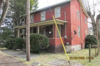 Single Family for sale in 521 S Edgar Ave, Ronceverte, WV, 24970